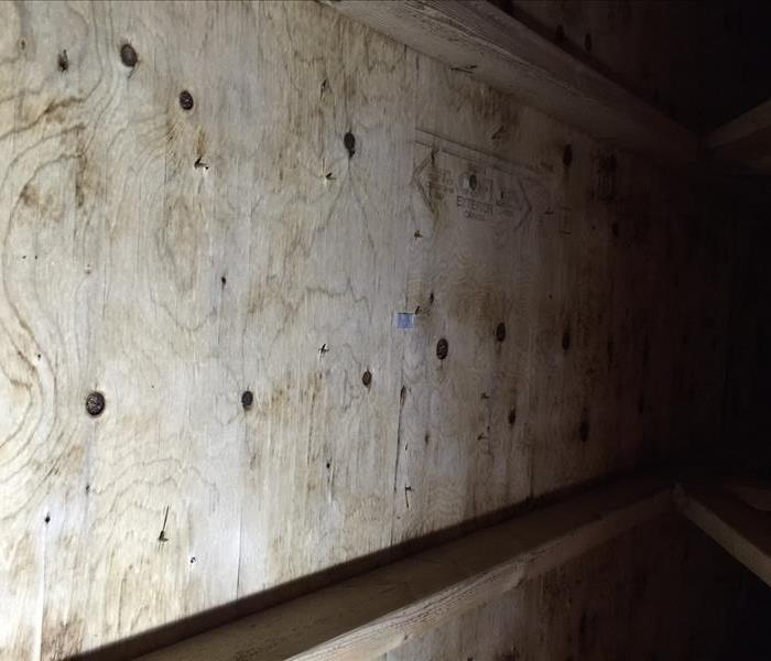 Attic mold remediation in Langley, BC After