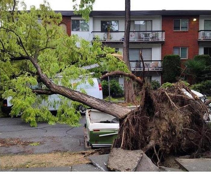 Storm Damage When Storms or Floods hit the Lower Mainland SERVPRO is ready!