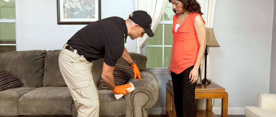 Langley, BC carpet upholstery cleaning