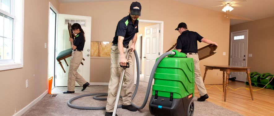 Langley, BC cleaning services